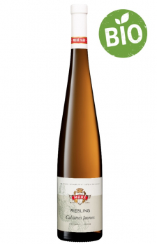 MURE 